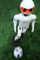 igus Robot Kicking