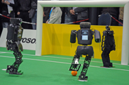 RoboCup German Open 2008 Final: NimbRo vs. FUmanoid
