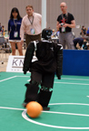 RoboCup 2009: Dynaped Kicking